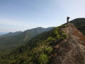 hiking atlantic rainforest